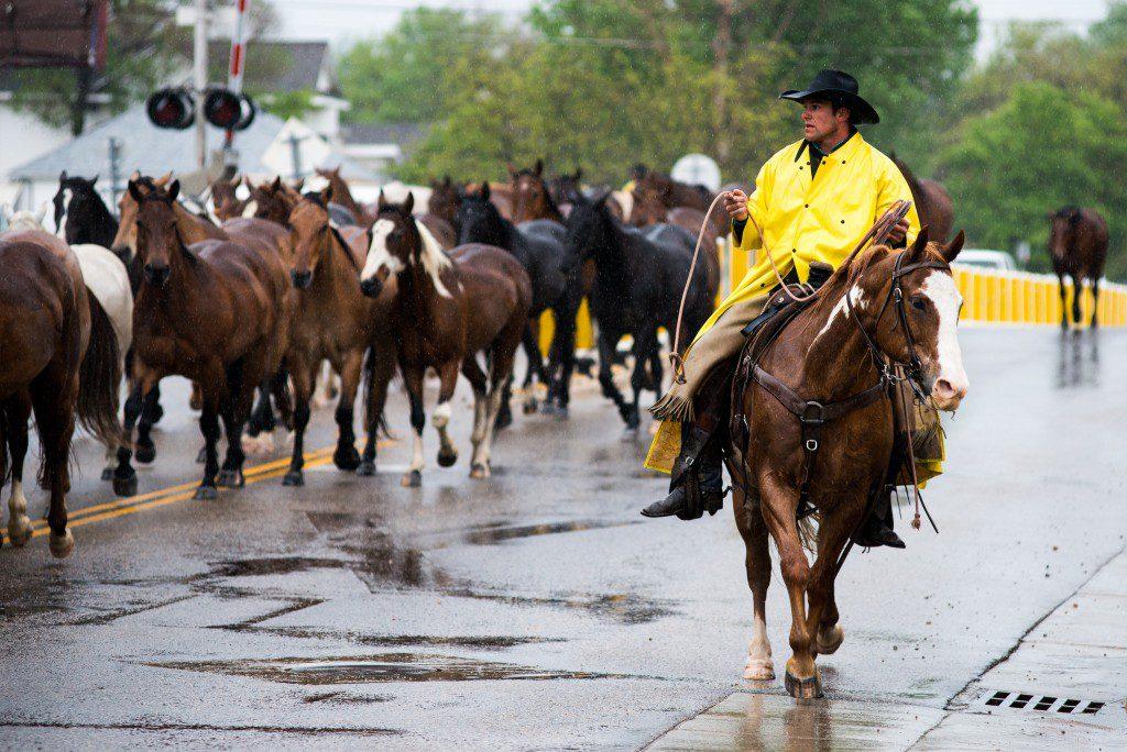 5 Things To Do In Sheridan This Spring Sheridan Wyoming