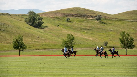 Polo at the Equestrian Center